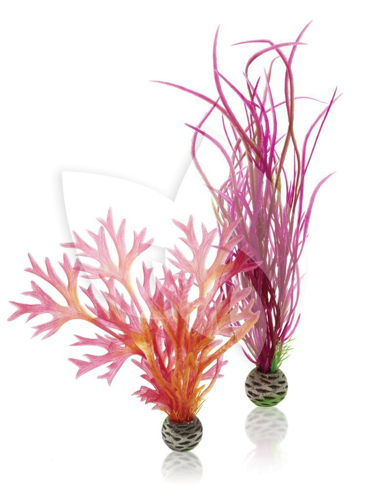 Biorb planten medium rood roze aquarium decoratie for Decoratie aquarium