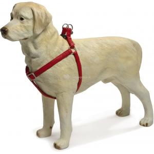 Hondentuig Mac Leather 35-60cm rood